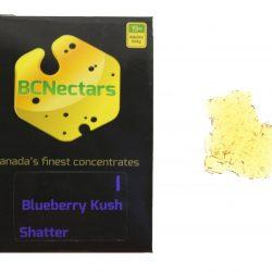 BlueberryKushN118