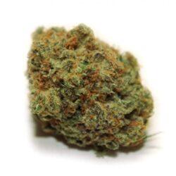 blueplatinum 5