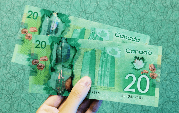 Where to Buy CBD Oil in Canada